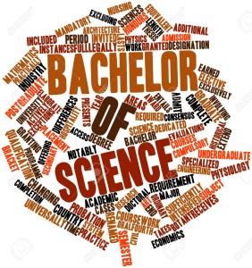 Bachelor Bsc